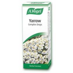 Yarrow complex 50ml (Gastrosan)