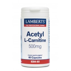Acetyl L Carnitine 500mg 60 κάψουλες